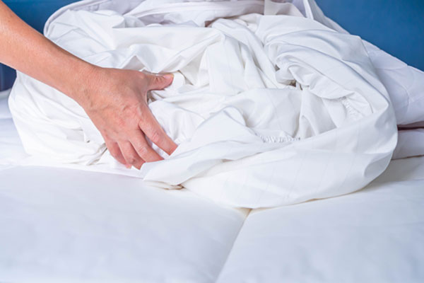 How to Prevent Bed Bugs in Santa Fe NM