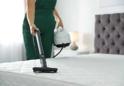 Do it yourself bed bug treatment